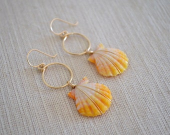 Sunrise Shells with Circle Hoop Earrings, Gold Filled