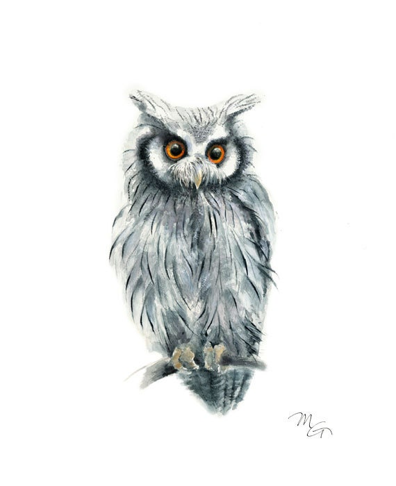 Owl watercolor painting - Bird Art Print. Bird Illustration.