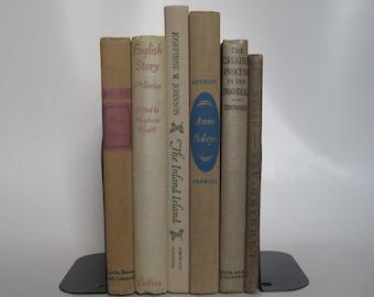 Vintage Book Bundle in Faded Colors