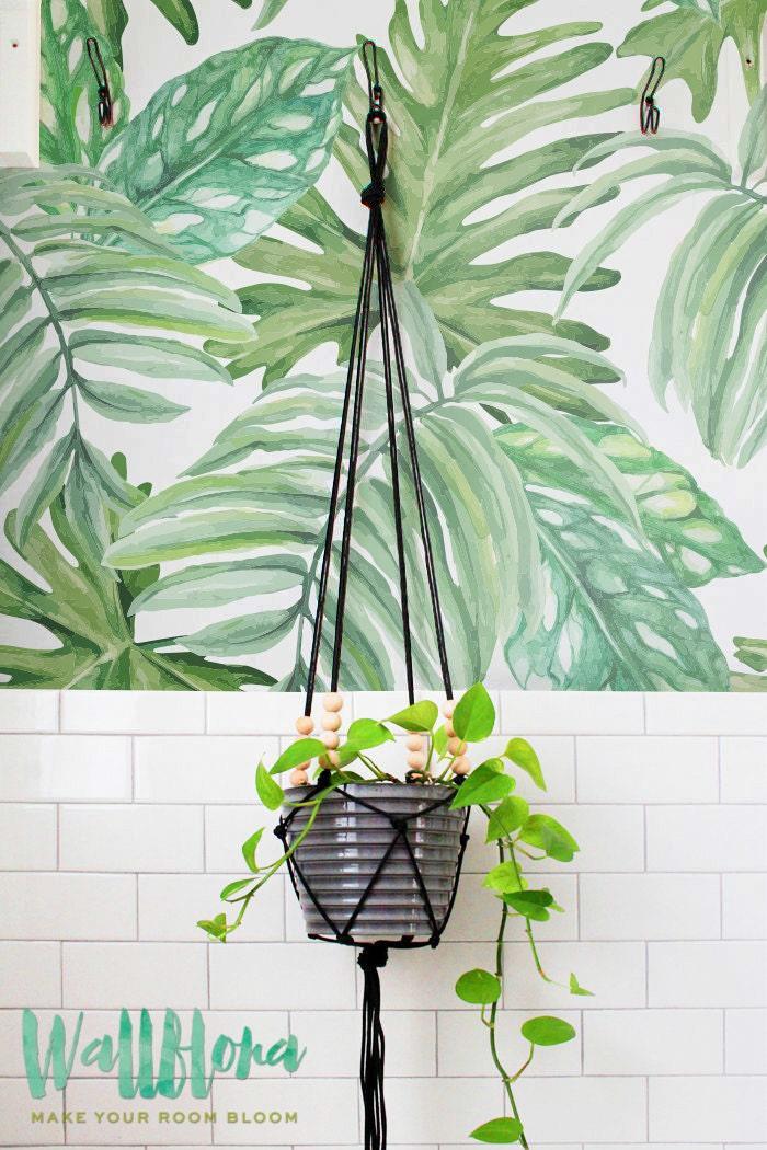 Monstera Leaves Pattern Wallpaper Removable Wallpaper