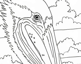 pelican coloring page embroidery pattern digital download adult coloring page coloring