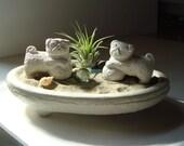 NEW! Lucky Double Pug Foo Dog Sculptures in Zen Garden Air Plant Terrarium