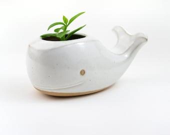 Cute whale ceramic planter  - white- made in Brazil