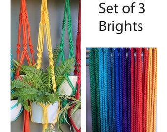 Set of 3 Macramé Plant Hangers in assorted bright colours
