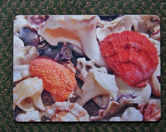 Beach Shell Placemat