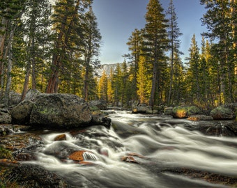 Water fogging, Motion Blur, Long Exposure, Trees. Water, River, Stream, Rocks, Rapids