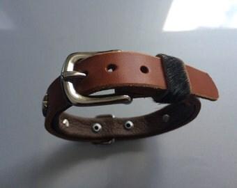 Dog collar for small dog