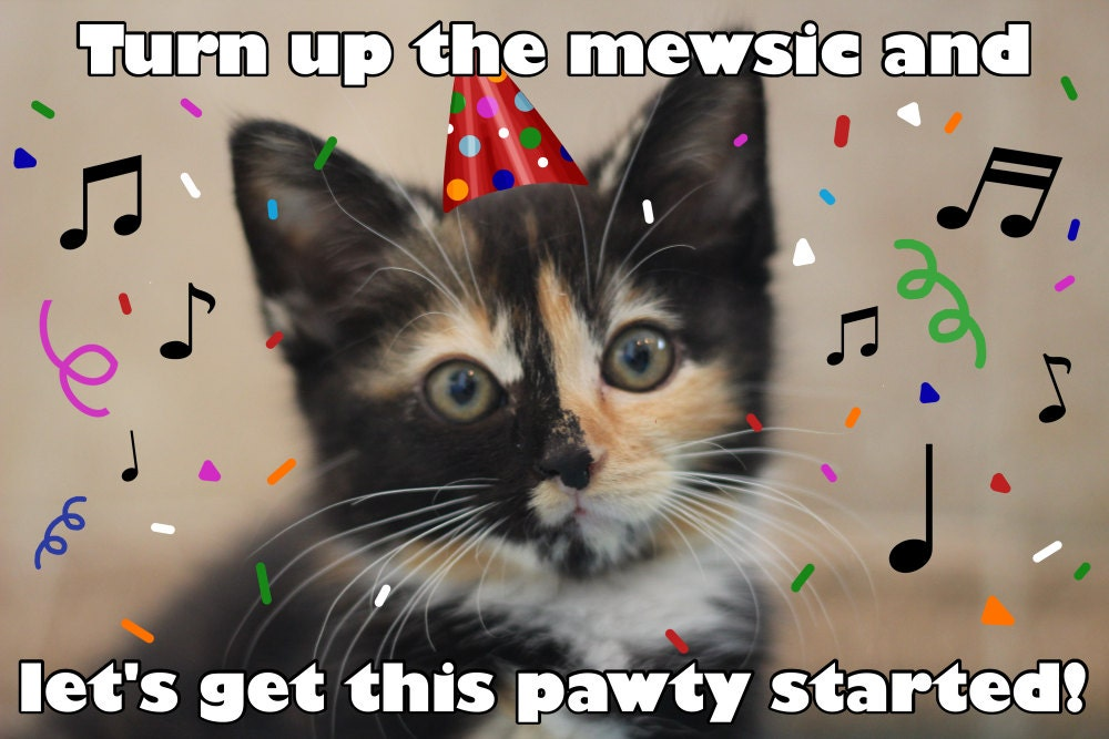 Turn Up the Mewsic Funny Cat Pun Card Cat Pun Birthday – Birthday Card from Cat