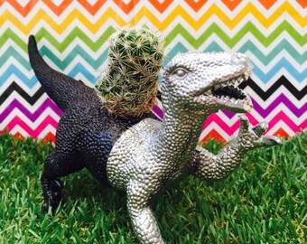 Dinosaur Planter, Succulent Planter, Air Planter, Cactus Planter, dinosaur