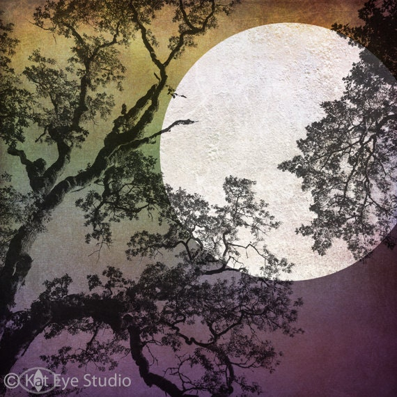 Harvest Moon Limited Edition Matted Print