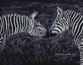 Zebra Limited Edition Signed and numbered pencil drawing