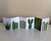 Mini accordion book - Plants