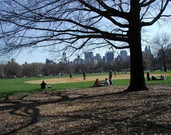 New York Print, Central Park, NYC Print, Street Photography, Giclee Art Print, Fine Art Photography by Deborah Julian
