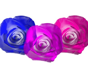 Bi and Pan Pride Roses