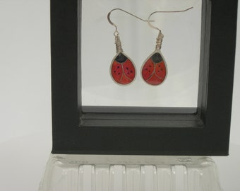 plique a jour enamel ladybug earrings