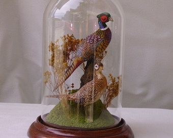 "Pheasants hand-painted sculpture in 8"" crystal dome"