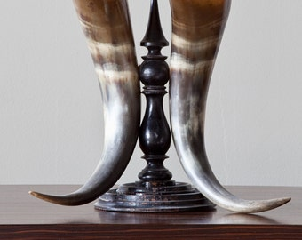 Horn Pair On Ebonized Stand