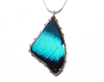 Blue Morpho Butterfly - Real Butterfly Necklace - Nature Jewelry - Blue and Black Butterfly