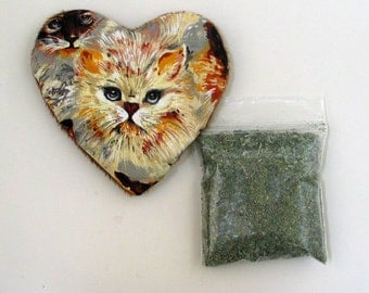 Catnip Heart Toy with Catnip Refillable  Blue Eyed Cat