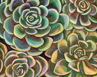 Succulent Garden 6x6 inch Archival Print on Wood