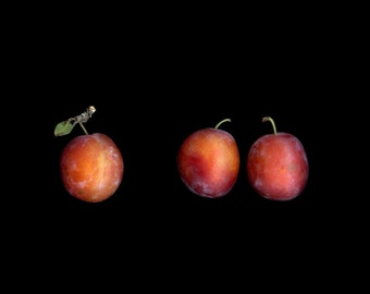 An  instant download of three beautiful  Red Plums //  jpg file / home decor / wall art / farmers market