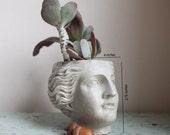 Venus Planter, Roman Goddess, Greco-Roman, Head, Succulent Planter, Cement, Concrete, Casting, Home Decor