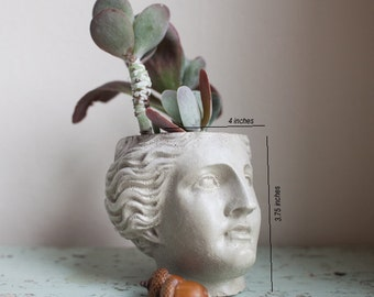 Venus Planter, Roman Goddess, Greco-Roman, Head, Succulent Planter, Cement, Concrete, Casting, Home Decor