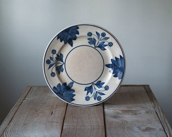 Antique Baker & Co Plates, Made In England, Vintage Hand Painted Ironstone Plates, Serving Ware, Table Ware, Cottage Chic
