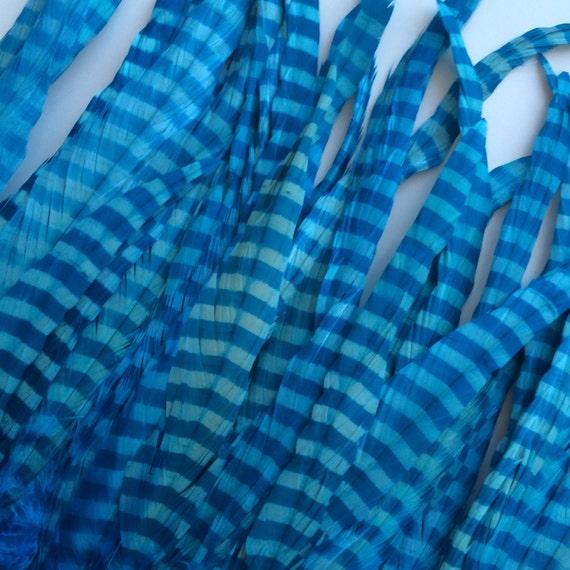Zebra Stripy Coque Tail Feathers Aqua And Royal Blue Z