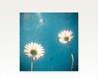 SALE 25% OFF Daisy Photography, Nature Photo, Flower Art, Shabby Chic Decor, Summer, Floral, Indigo and Wihte Decor - I Love You