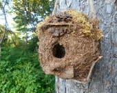 Outdoor Birdhouse, Rustic Mossy bird house with Forest Finds and Driftwood