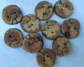 Natural Tree Branch Buttons, Spalted Oak Wood, 1 Inch, Set of Ten