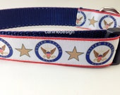 Dog Collar, US Navy, 1 inch wide, adjustable, quick release, metal buckle, chain, martingale, hybrid, nylon
