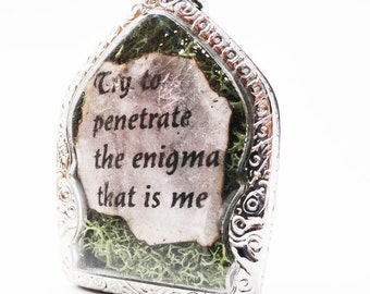Try To Penetrate The Enigma That Is Me, Faux Stone Heart Terrarium Necklace, Love Quote, Mini Curio Display, Natural World LK30