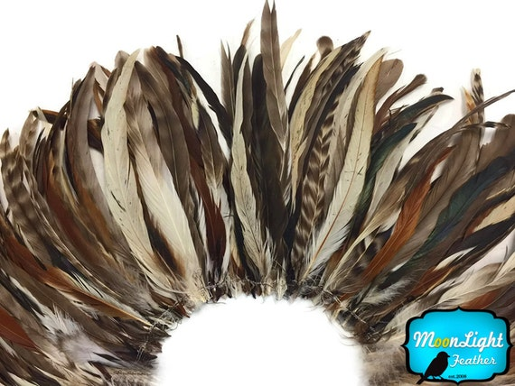 Extra Long Tail Feathers, 2.5 Inch Strip - NATURAL BROWN CHINCHILLA Mix Coque Tail Strung Feathers : 3453