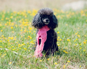 Pink Crochet Small Dog Scarf With Fringes