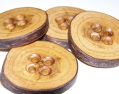 "4 Handmade plum wood Tree Branch Buttons with Bark, accessories (1,65'' diameter x 0,24"" thick)"