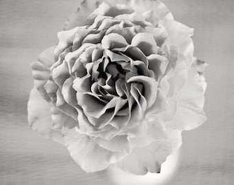 floral photography, black and white flower prints, flower photography, black and white flower photos, still life photo, floral art,