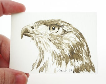 ACEO Print Bird ACEO Limited Edition Art Card Watercolor Painting Hawk Painting Collectible Art Miniature Art Unframed Art Wildlife Art