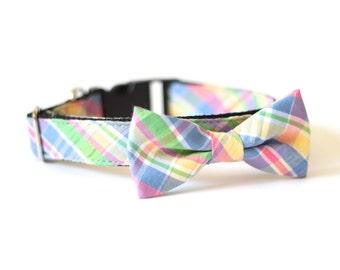 New Color! Potrero Hill seersucker, dog bow tie collar, cat bow tie collar, seersucker dog collar, dog bow tie, dog collar, pet bow tie
