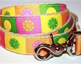 Lemon and Lime Dog Leash, Big Dog Leash, Orange Dog Leash, Hemp Dog Leash