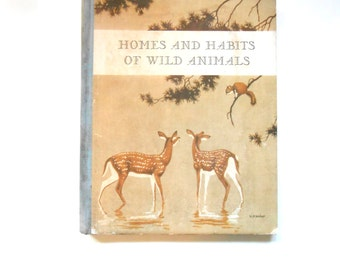 Homes and Habits of Wild Animals, a Vintage Children's Book, Illustrated