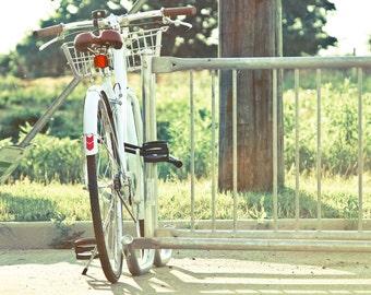Bike Photography Bicycle Wall Art Home Decor Blue and Green Photograph Bike Decor Bicycle Rack