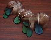 Peacock Green Metallic Lady Amherst Tippet Feathers for Crafts Small Green Blue Feathers Earring Feather Plume Little Feathers - 12