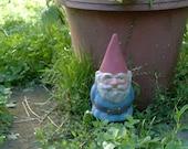 SALE! Mr Gnome Blue 9 Inch Tall R50B
