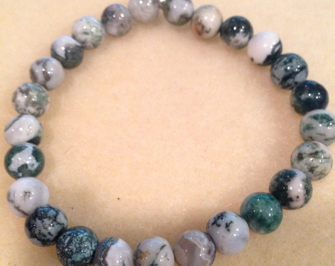 Tree Agate 8mm Round Bead Bracelet with Sterling Silver Accent