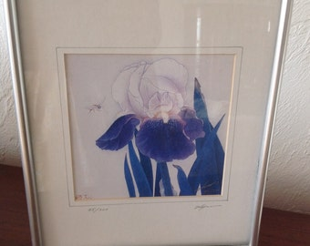 Framed Signed Iris Print 45/200 Edition