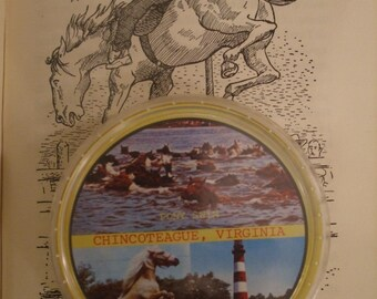 Playing Cards Round Vintage Pony Swim and Pony Souvenir Chincoteague Virginia Assateague Lighthouse Pony Swim