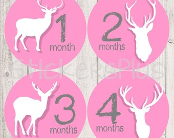 Baby Month Stickers Monthly Baby Stickers Milestone Stickers  Bodysuit Stickers Monthly Stickers Plus FREE Gift Girl Pink Grey Deer Hunter