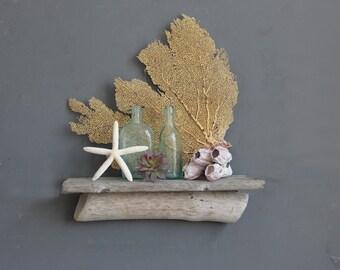 Natural Driftwood Shelf // Size SMALL